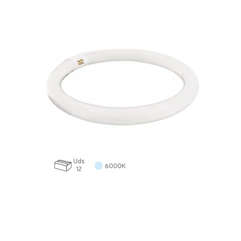 Tubo fluorescente circular T9